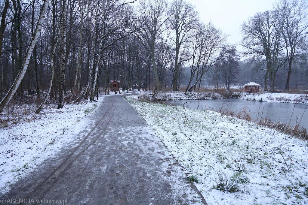 Niedziela była drugim śnieżnym dniem tej zimy w Szczecinie