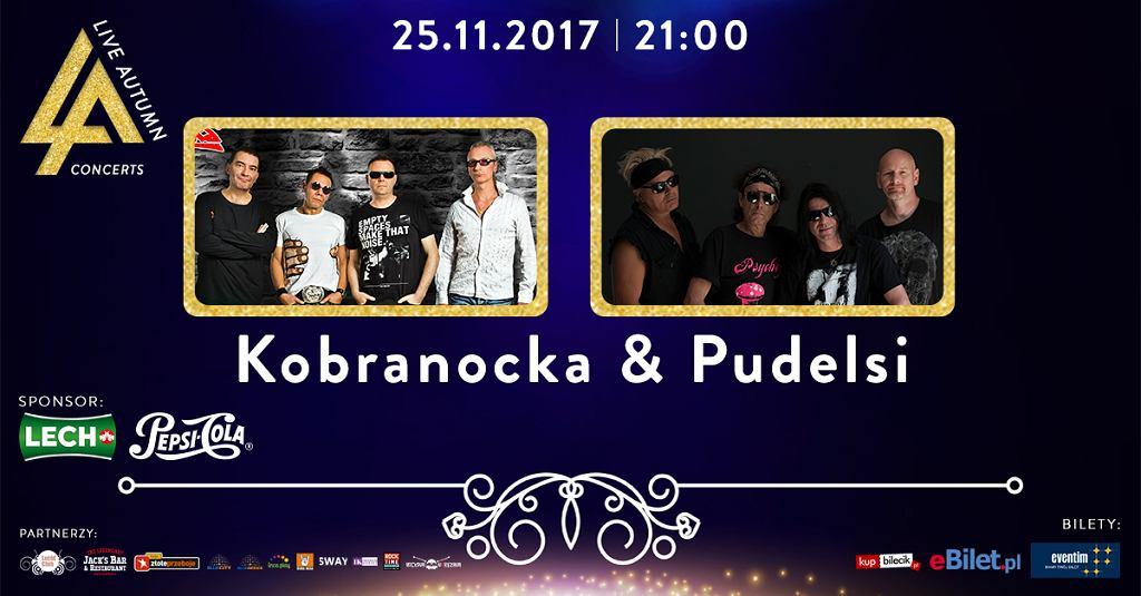Kobranocka i Pudelsi w klubie Lucid w Warszawie
