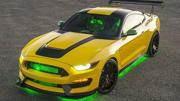 """Ford """"Ole Yeller"""" Mustang"""
