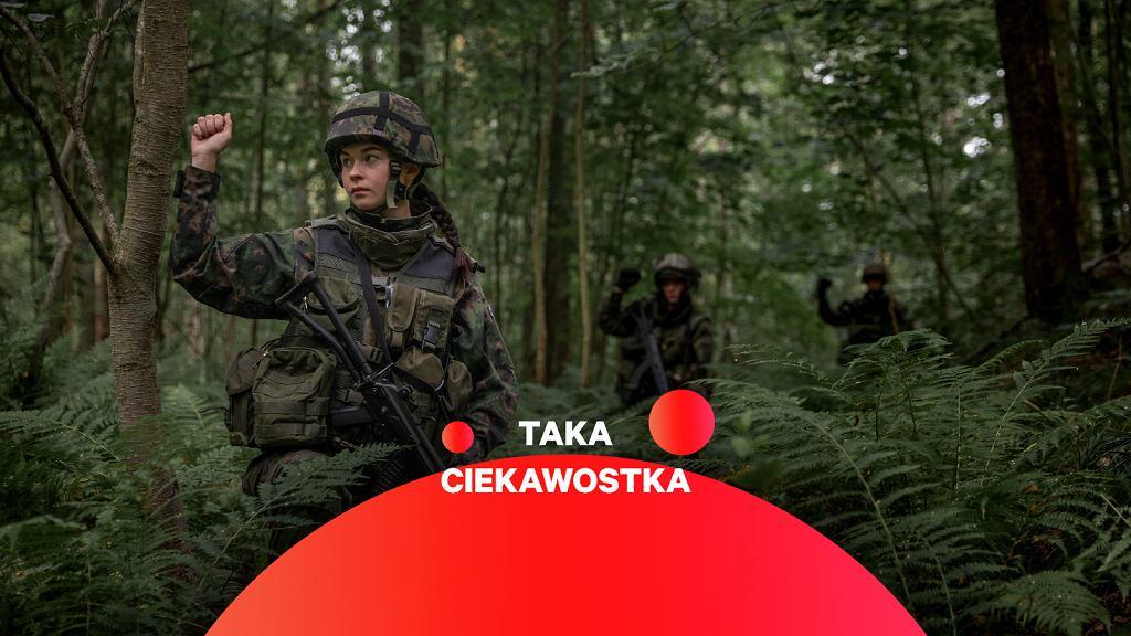 Fińscy żołnierze