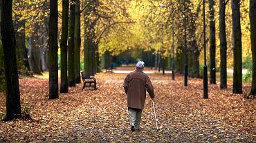 Nowa forma wypłaty emerytur i rent. Jest projekt rządu