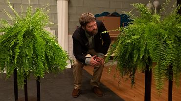 kadr z filmu 'Between Two Ferns'
