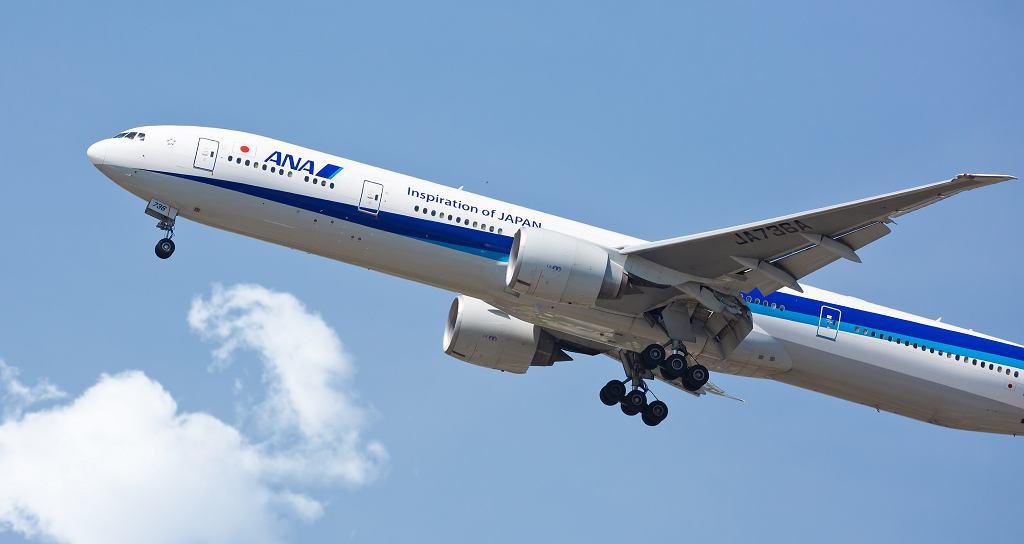 Samolot linii All Nippon, zdjęcie ilustracyjne
