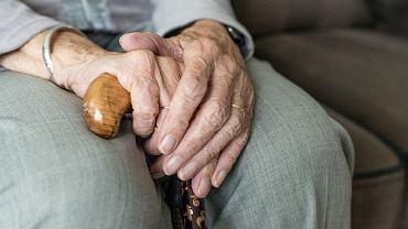 Czternasta emerytura. Pierwsze wypłaty jeszcze w październiku. Sprawdź, czy się załapiesz