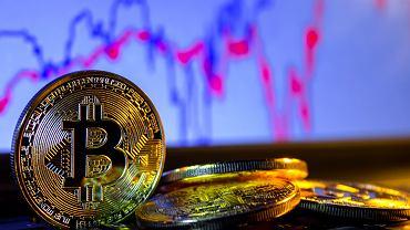 bitcoin pelnas drakonas den polska