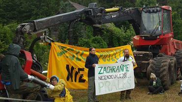 30 aktywistów z Polski, Czech i Rumunii zablokowało wycinkę Puszczy Białowieskiej.