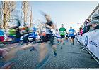 Starty kontrolne jako element przygotowań pod maraton, dlaczego warto?