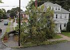 Burza tropikalna Henri uderzyła w USA. Prezydent Biden prosi, by przy ewakuacji zabrać m.in. maseczki