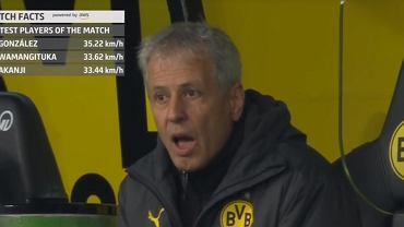 Lucien Favre w trakcie meczu Borussia Dortmund - Stuttgart