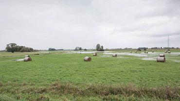 Ściernisko w Stanisławowie - rząd PiS planuje tu postawić Centralny Port Lotniczy... 25 września 2017