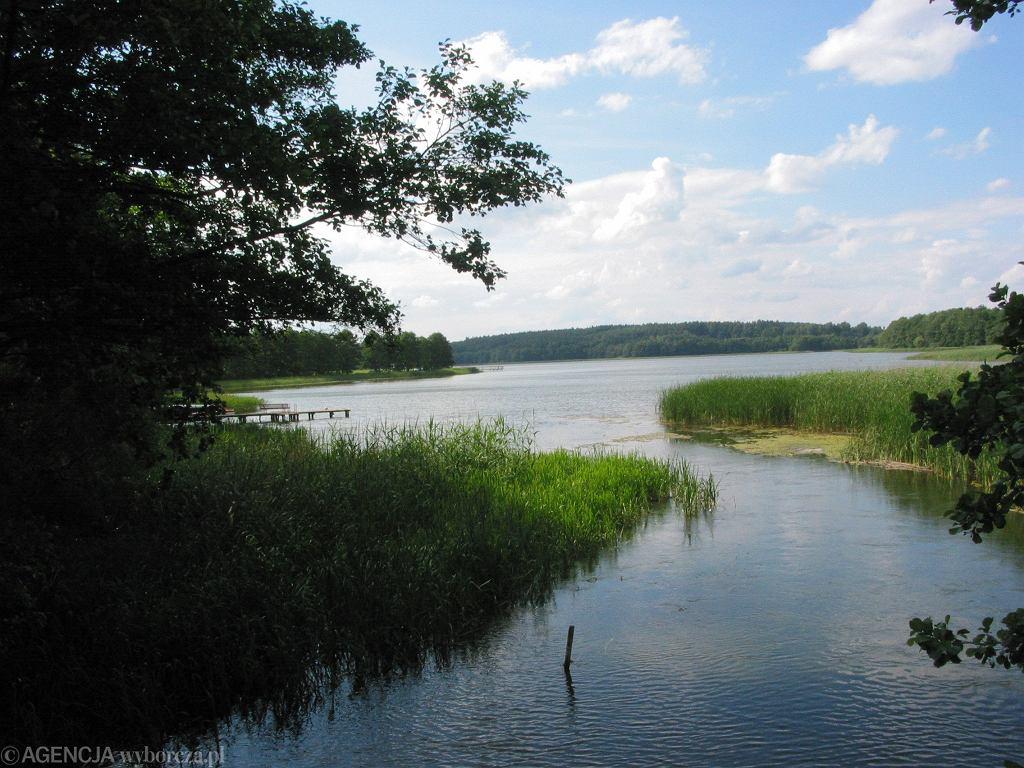 Pisa jest rzeką, którą kajakiem mogą spływać również początkujący