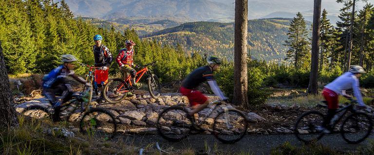 Rower górski lub rower wycieczkowy z pełnymi sakwami, wędrówki i zapierające dech widoki. Czas na aktywne lato