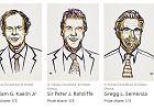 Zaczęło się od czynnika HIF, czyli za co tegoroczni laureaci dostali Nagrodę Nobla w dziedzinie fizjologii lub medycyny? Wyjaśniamy