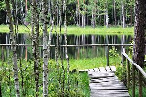 Co warto zobaczyć na Mazurach? Nie tylko jeziora i lasy. Odwiedź mosty, zamki i... piramidę