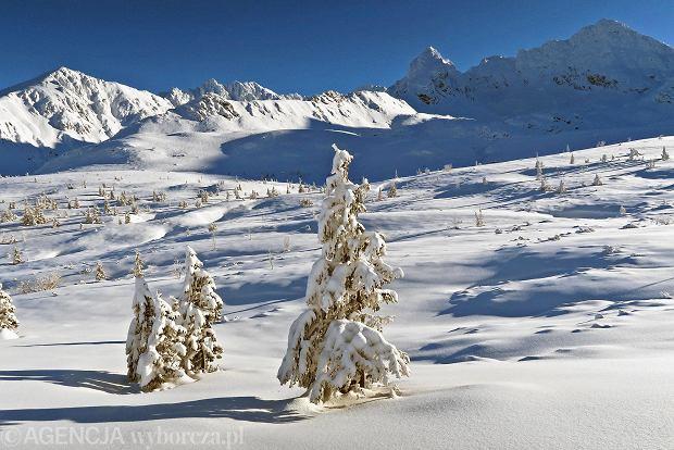 Zdjęcie numer 23 w galerii - Słońce, śnieg i szczyty. Piękna pogoda w Tatrach, zachwycające widoki