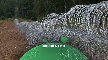 Drut żyletkowy na granicy Polski i Białorusi