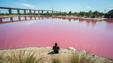 Jezioro w Melbourne w Australii zrobiło się różowe