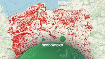 Mapa wycinek inicjatywy Lasy i Obywatele