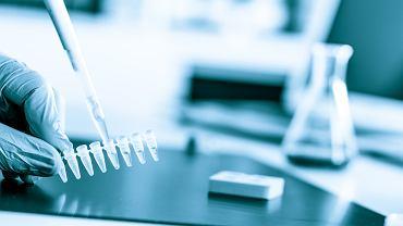 Próbki do testów PCR