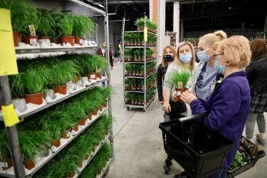 Zdjęcie numer 18 w galerii - Zazieleniły się targi w ten weekend. Trwa Festiwal Roślin i ich wyprzedaż. Zobacz, co można tam kupić  [ZDJĘCIA]
