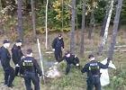 Gdańscy policjanci uwolnili daniela. Zwierzę zakleszczyło się w ogrodzeniu