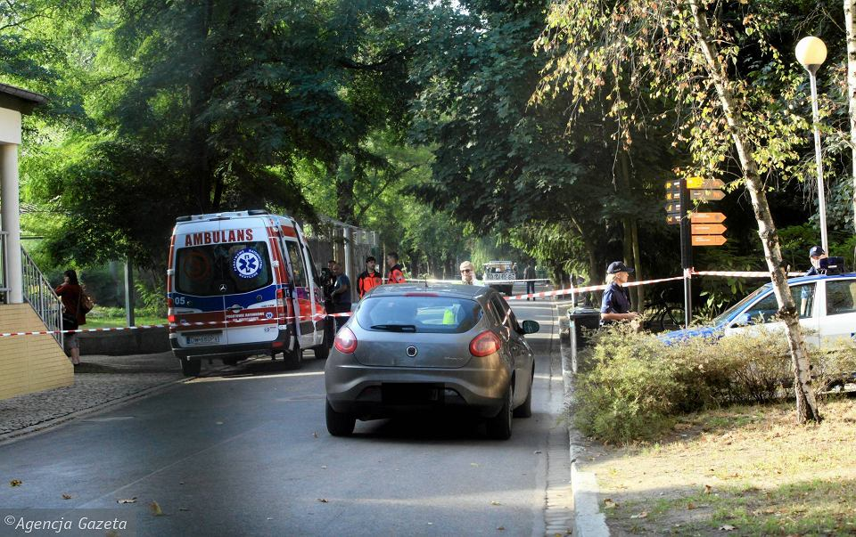 Wrocław, wypadek w zoo. Na miejscu policja i pogotowie