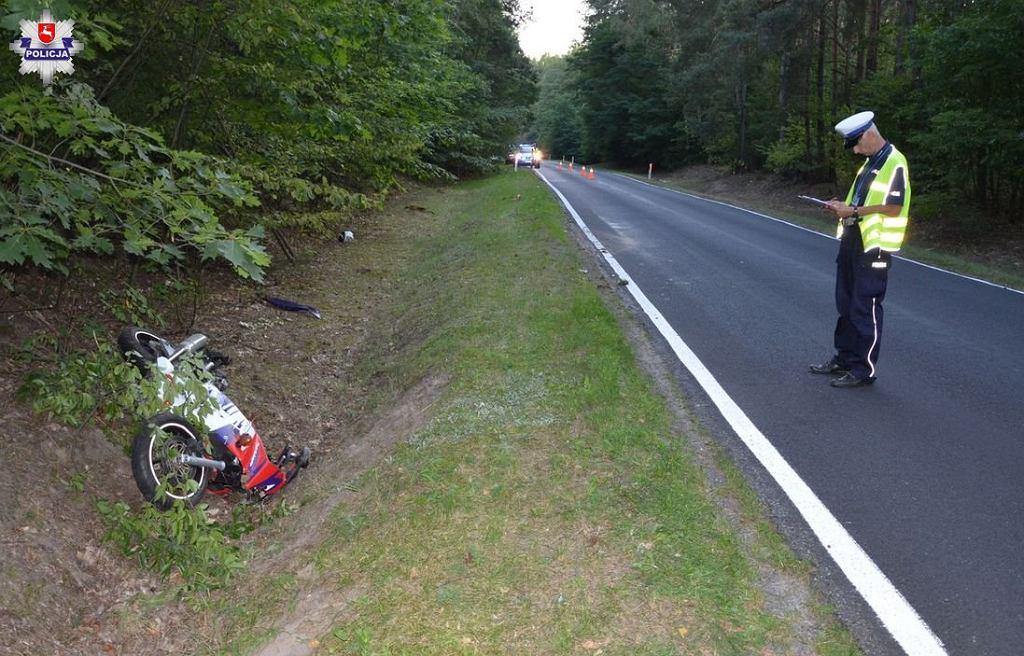 Lubelskie. W Parczewie motocyklista zderzył się z łosiem. Nie żyje 21-latek