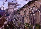 Największe oszustwo w historii Kalifornii. Więźniowie wyłudzili nawet miliard dolarów z pomocy na COVID-19