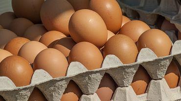 Jajka (zdjęcie ilustracyjne)