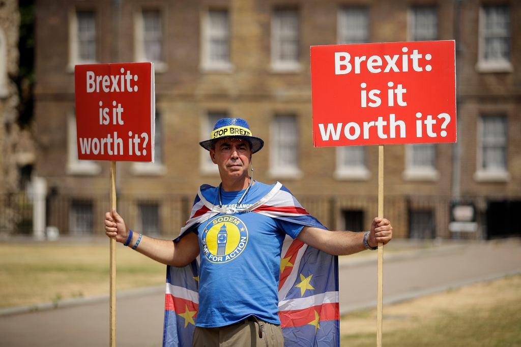 Przeciwnik brexitu przed parlamentem w Londynie, 9 lipca
