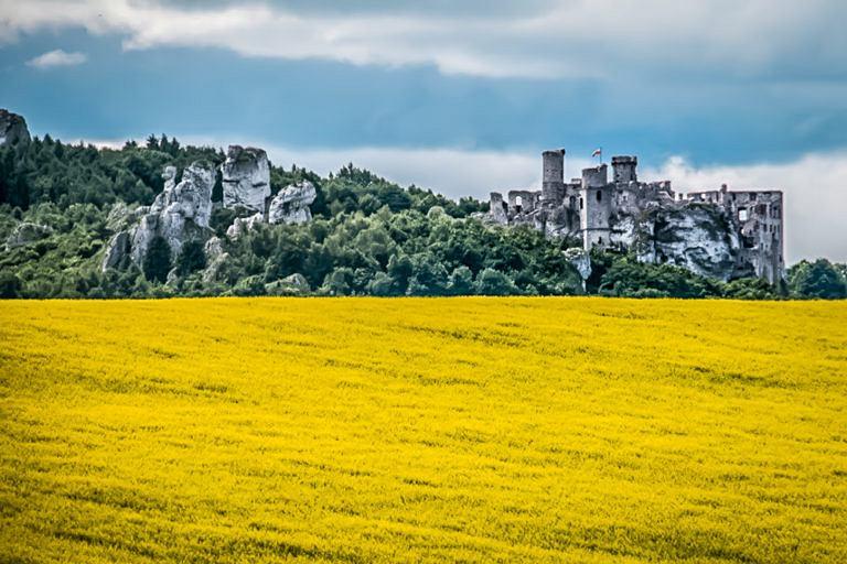 Zamek Ogrodzieniec to bardzo fotogeniczny obiekt z mnóstwem zakamarków, który piękny się prezentuje w dzień i w nocy. Zamek w Ogrodzieńcu to jedna z pereł na Szlaku Orlich Gniazd i na Jurze Krakowsko-Częstochowskiej. Oprócz ruin można zwiedzić salę tortur, kapliczkę oraz pobliski gród Birów. Miejsce z historią sięgającą XIV wieku i owiane niejedną legendą. Mówi się, że ten zamek jest siedliskiem sił mrocznych i potężnych, a w nocy podobno tam straszy.