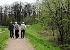 W PiS wraca pomysł równej dla wszystkich emerytury obywatelskiej