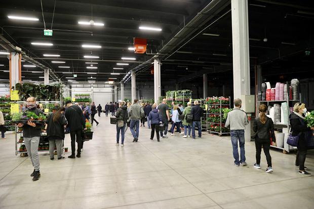 Zdjęcie numer 14 w galerii - Zazieleniły się targi w ten weekend. Trwa Festiwal Roślin i ich wyprzedaż. Zobacz, co można tam kupić  [ZDJĘCIA]