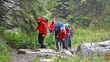 Akcja ratunkowa w Wielkiej Jaskini Śnieżnej w Tatrach