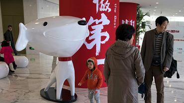 China Google JD