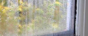Mokre okna po nocy. Sprawdź, jak skutecznie pozbyć się z nich wilgoci