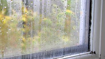 Niezawodne sposoby na zaparowane okna w domu