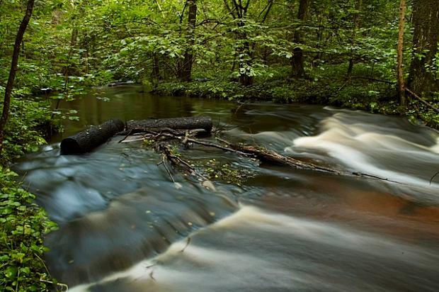 Rzeka Szum