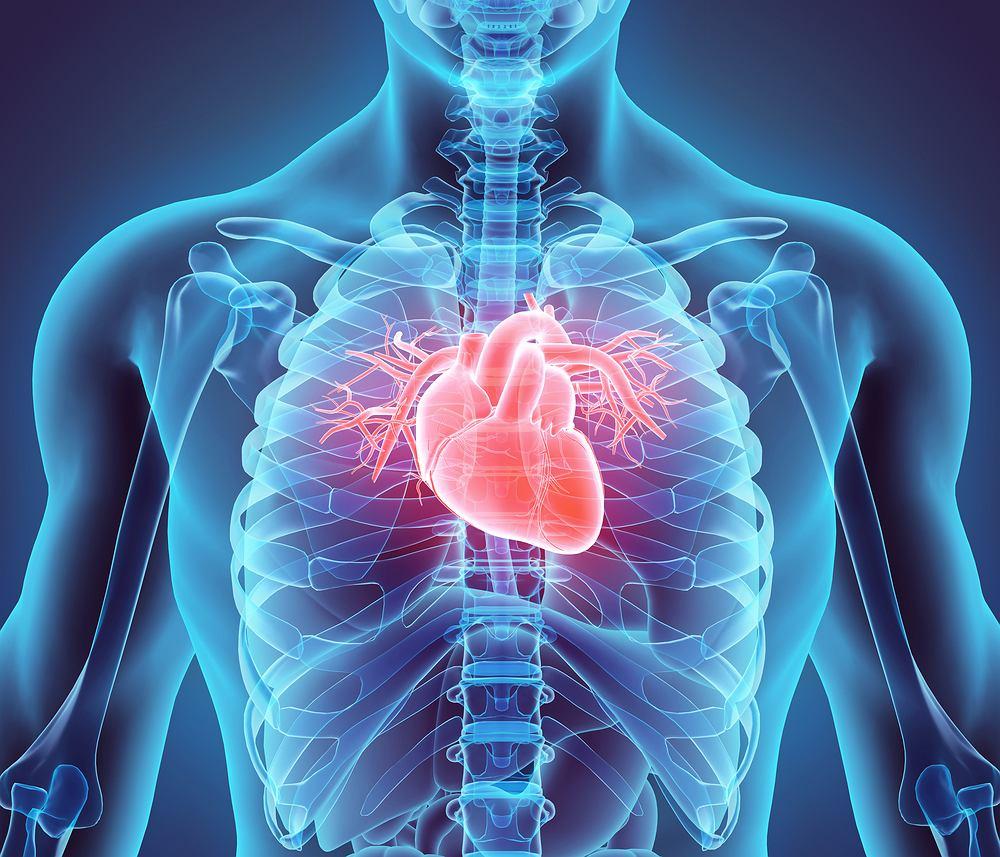 Nerwica serca jest odmianą nerwicy lękowej