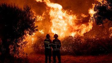 Pożary lasów w Portugalii. Co najmniej 20 poszkodowanych i setki tysięcy spalonych drzew