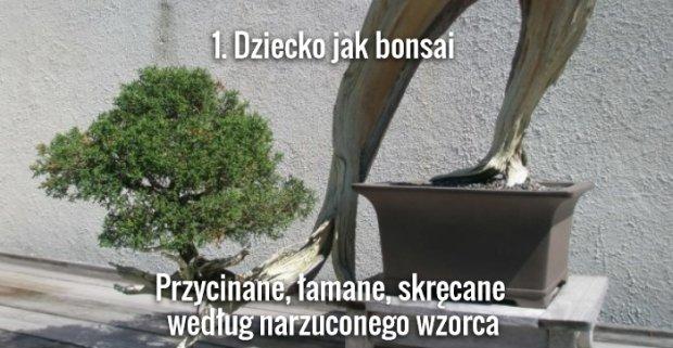 Foch.pl/flickr.pl