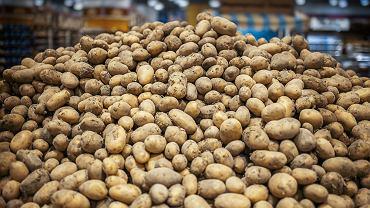Rekordowo wysokie ceny ziemniaków w tym sezonie. Wszystko przez susze.