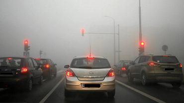 Mgła na drodze