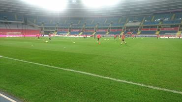 Murawa na Stadionie Śląskim