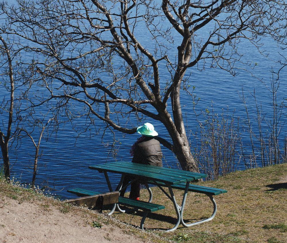 Kontakt z naturą dla Szwedów jest niczym spotkanie z sacrum