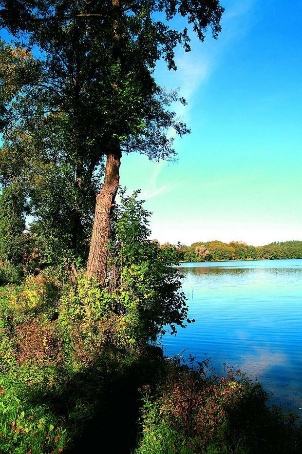 Jezioro Drawsko.
