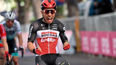 Świetna końcówka. Australijczyk zwycięzcą 7. etapu Giro d'Italia