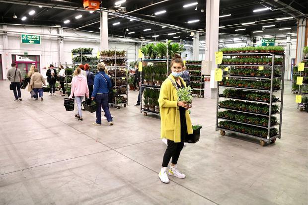 Zdjęcie numer 16 w galerii - Zazieleniły się targi w ten weekend. Trwa Festiwal Roślin i ich wyprzedaż. Zobacz, co można tam kupić  [ZDJĘCIA]