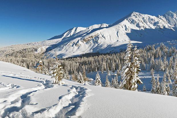 Zdjęcie numer 19 w galerii - Słońce, śnieg i szczyty. Piękna pogoda w Tatrach, zachwycające widoki