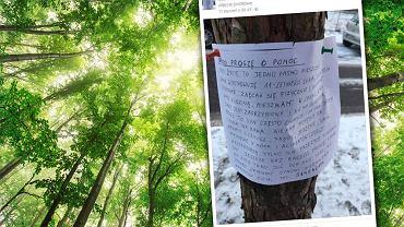 10 listów rozwiesiła na... drzewach